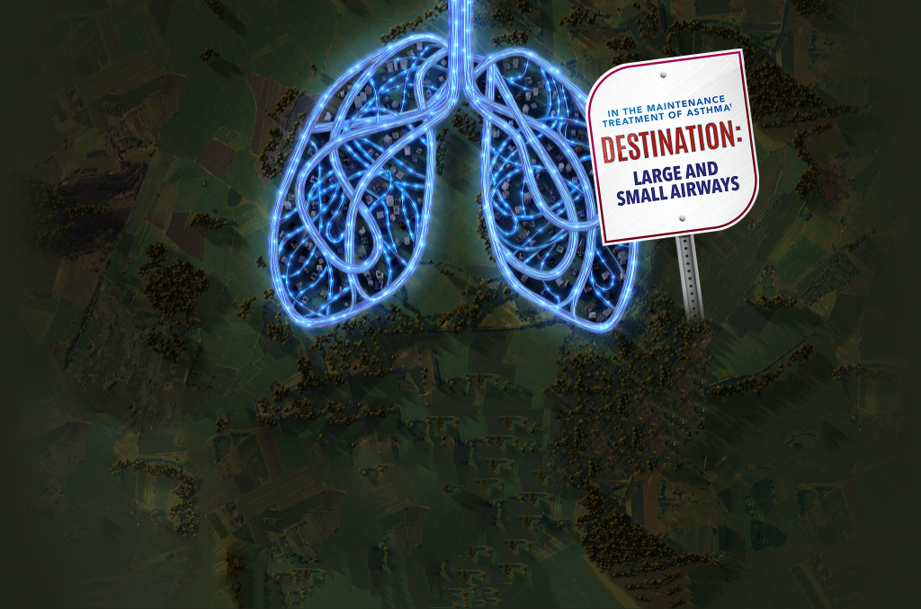 In the maintenance treatment of asthma – Destination: large and small airways